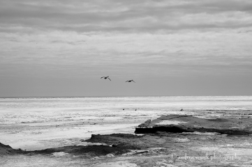 Erie Landing