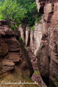 Hopewell Rocks 2