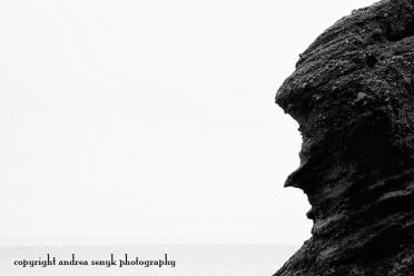 Hopewell Rocks 3
