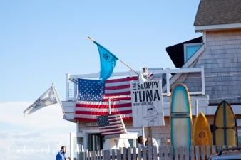 The Sloppy Tuna