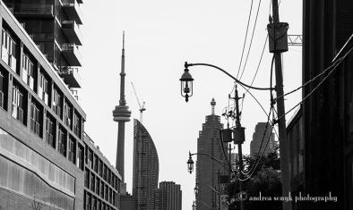 Toronto Shadows