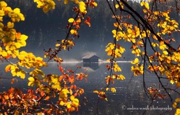 Herbst am Hackensee