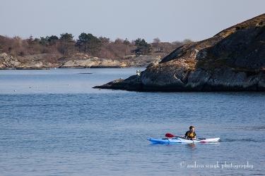 Kayaking Coves