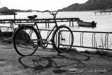 Sea-Cycle