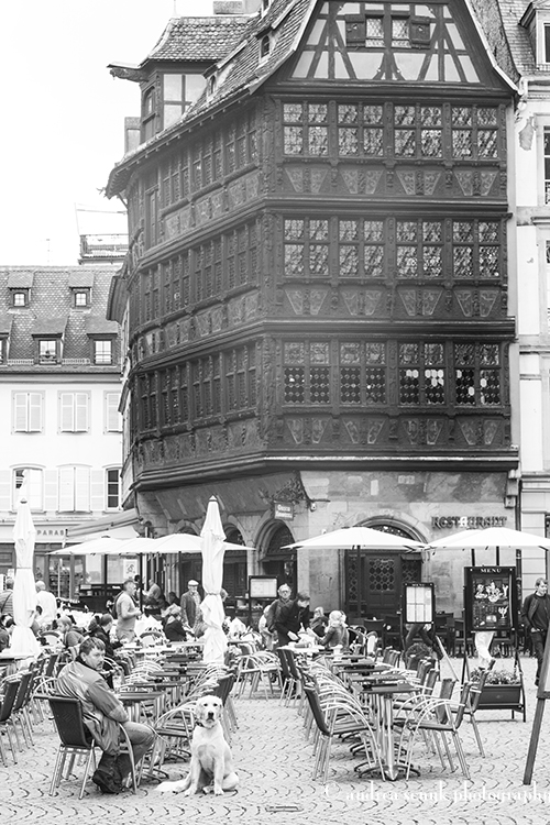 Strasbourg 12