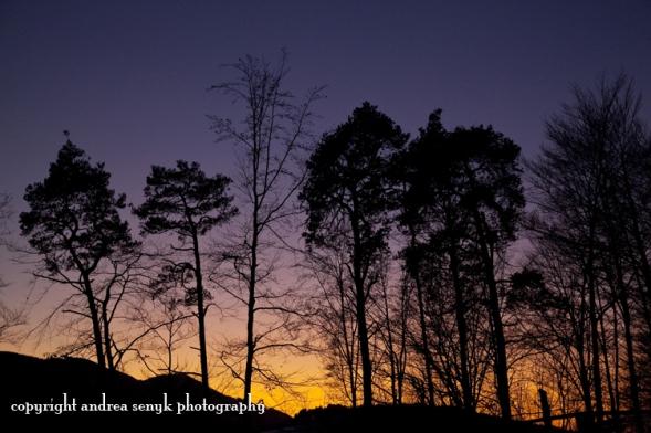 Tolzer Sunset