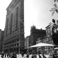 Flat Iron Lunch BW