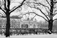 Hofgarten im Winter II