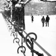 Hofgarten im Winter III