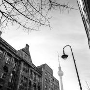 Morning in Berlin BW