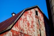 The Back Barn