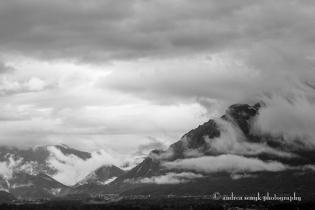 ©AndreaSenyk_1417